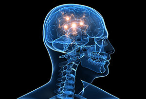 otak-sihat